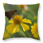 Ocola Skipper Throw Pillow by April Wietrecki Green