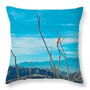 Ocotillo At Top Of Ladder Canyon With Salton Sea In Distance In Mecca Hills-ca Throw Pillow