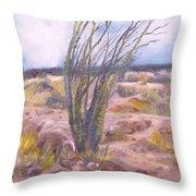 Ocotillo Throw Pillow