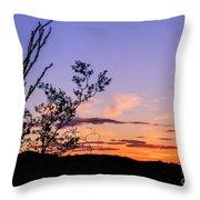 Ocotillo Sunset Throw Pillow