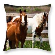 Ocracoke Ponies Throw Pillow