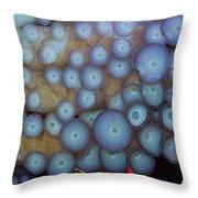 Octo Circles Throw Pillow