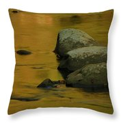 October Colors In Tennessee Throw Pillow