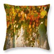 October Colors Throw Pillow