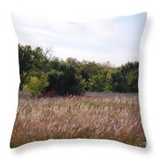 October Day Throw Pillow