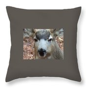 October Deer Iv Throw Pillow