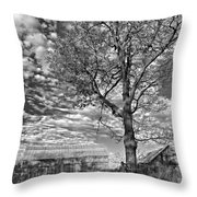 October Evening Monochrome Throw Pillow