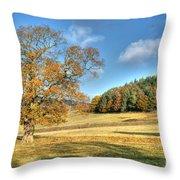 October Gold Throw Pillow