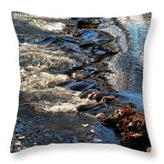 October Shimmers Throw Pillow