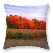 October Sunset On The Autumn Woods Throw Pillow