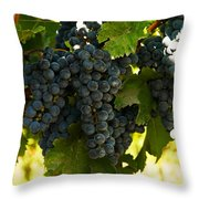 October Vintage Bonair Winery  Throw Pillow