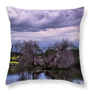 Odd Symmetry Throw Pillow