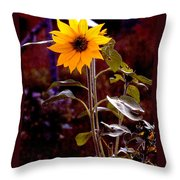 Ode To Sunflowers Throw Pillow