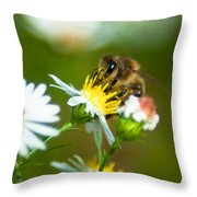 Of Bee And Flower Throw Pillow