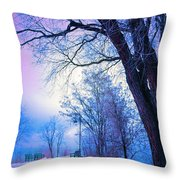 Of Dreams And Winter Throw Pillow