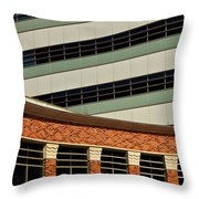 Of Lines And Curves Throw Pillow