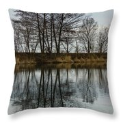 Of Mirrors And Trees Throw Pillow