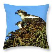 Of One Mind Throw Pillow