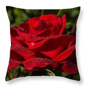 Of Red Roses And Diamonds  Throw Pillow
