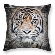 Of Tigers And Stone Throw Pillow