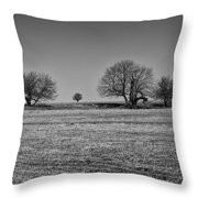 Off In The Distance Throw Pillow