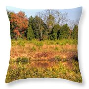 Off Knight's Road Throw Pillow