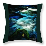 Off The Delaware 2 Throw Pillow