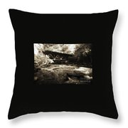 Off The Delaware River Throw Pillow