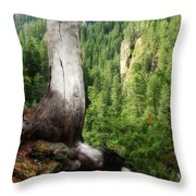 Off The Hiking Trail Throw Pillow