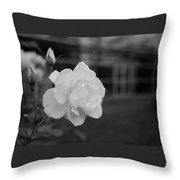 Office Roses Throw Pillow