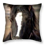 Oglala II Throw Pillow