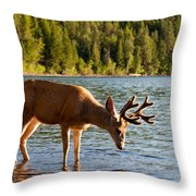 Oh Deer Is That Me Throw Pillow