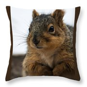 Oh Hello Throw Pillow