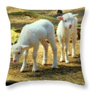 Oh Little Lamb Throw Pillow