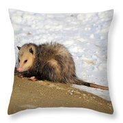 Oh Possum Throw Pillow