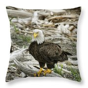 Oh Really Throw Pillow
