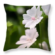 Oh So Pretty Musk Mallow Throw Pillow