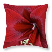 Oh So Red Throw Pillow