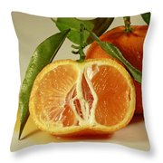 Oh Sweet Nectar Of Nature Throw Pillow