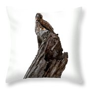 Oh Yeah You Blend By James Figielski Throw Pillow