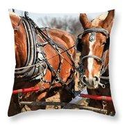 Ohio Draft Horses Throw Pillow