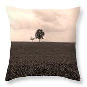Ohio Fields  Throw Pillow