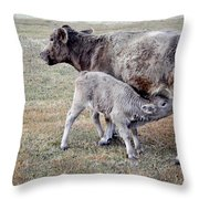 Oil Paint Look Cow And Calf Portrait Usa Throw Pillow