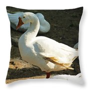 Oil Painting - A Duck Making A Pose Throw Pillow