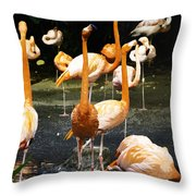 Oil Painting - A Number Of Flamingos With Their Heads Held High Inside The Jurong Bird Park Throw Pillow