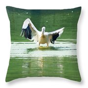 Oil Painting - Pelican Flapping Its Wings Throw Pillow