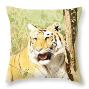 Oil Painting - An Alert Tiger Throw Pillow