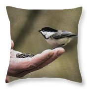Oil Painting Black-capped Chickadee  Throw Pillow