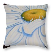 Oil Painting - Daisy Throw Pillow