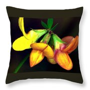 Yellow And Orange Trefoil  Throw Pillow